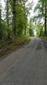 10.13 Acre Stump Hollow Rd - Photo 13
