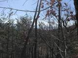 0 Bluff View Dr - Photo 10