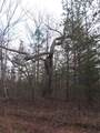 2075 Lower Fire Tower Rd - Photo 8