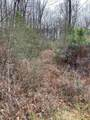 7.6 Acres Blue Springs Rd Rd - Photo 2