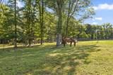 0 Sawyer Cemetery Rd - Photo 6