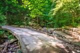 1347 Roaring Creek Rd - Photo 124