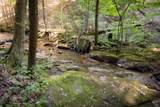 1347 Roaring Creek Rd - Photo 98