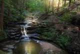 1347 Roaring Creek Rd - Photo 99