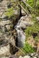 1600 Chickamauga Tr - Photo 19