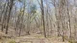 8.43 Acres Spruce, Willow & Maple - Photo 3
