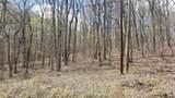 8.43 Acres Spruce, Willow & Maple - Photo 4