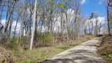 8.43 Acres Spruce, Willow & Maple - Photo 5
