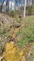 8.43 Acres Spruce, Willow & Maple - Photo 6