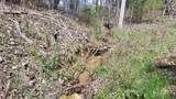 8.43 Acres Spruce, Willow & Maple - Photo 7