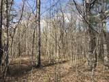 0 White Oak Swamp Rd - Photo 5