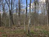 0 White Oak Swamp Rd - Photo 6
