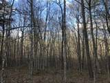 0 White Oak Swamp Rd - Photo 7
