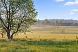 1881 Round Pond Rd - Photo 13