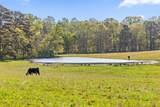 1881 Round Pond Rd - Photo 42
