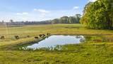 1881 Round Pond Rd - Photo 54