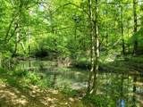 1292 Stone Cave Rd - Photo 11