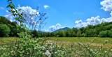 801 Cookson Creek Rd - Photo 62