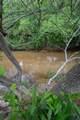 583 Thunder Canyon Dr - Photo 22