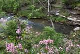 583 Thunder Canyon Dr - Photo 5