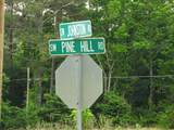 302 Pine Hill Dr - Photo 42