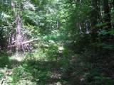 Lot 1 Timber Ln - Photo 2