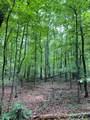 Lot 44 Bluff Woods - Photo 1