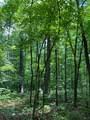 Lot 44 Bluff Woods - Photo 3