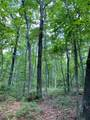 Lot 44 Bluff Woods - Photo 4