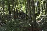 1071 Raven Cliff Rd - Photo 3