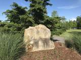 0 Bluff View Dr - Photo 14