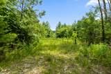 0 Alabama Hwy. - Photo 3