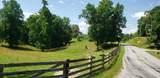 7.25 Acres Sugar Creek Road - Photo 13