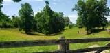 7.25 Acres Sugar Creek Road - Photo 16