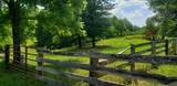 7.25 Acres Sugar Creek Road - Photo 7