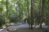 56 Timber Ridge Rd - Photo 12