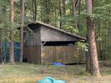 4203 Young Rd - Photo 4
