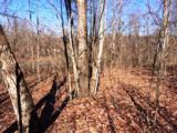 244 Roaring Creek Rd - Photo 14