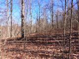 244 Roaring Creek Rd - Photo 15