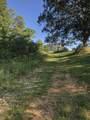 4307 Green Shanty Rd - Photo 6