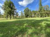 543 Mildreds Way - Photo 41