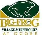 156 Tree Frog Ln - Photo 12