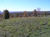 100 Raven Crest Trail Tr - Photo 22