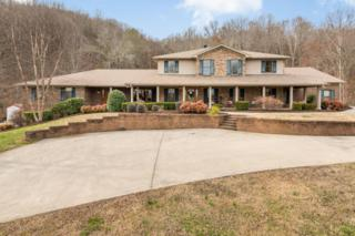162 NW Knobb Hill Dr #88, Cleveland, TN 37312 (MLS #1259670) :: Keller Williams Realty | Barry and Diane Evans - The Evans Group