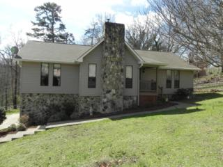 8904 Stone Tip Ln, Chattanooga, TN 37421 (MLS #1259685) :: Keller Williams Realty | Barry and Diane Evans - The Evans Group