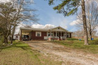 3964 Webb Rd, Chattanooga, TN 37416 (MLS #1259728) :: Keller Williams Realty   Barry and Diane Evans - The Evans Group