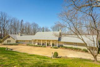 1115 Healing Springs Rd, Chattanooga, TN 37419 (MLS #1261049) :: Keller Williams Realty   Barry and Diane Evans - The Evans Group