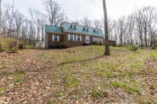 1022 River Bend Rd, Chattanooga, TN 37419 (MLS #1261256) :: Keller Williams Realty   Barry and Diane Evans - The Evans Group