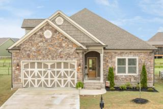 8491 Kennerly Ct, Ooltewah, TN 37363 (MLS #1262614) :: Keller Williams Realty   Barry and Diane Evans - The Evans Group