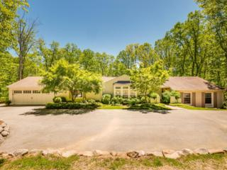1301 Scenic Hwy, Lookout Mountain, GA 30750 (MLS #1263577) :: The Robinson Team